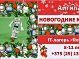 Зимние робобаттл-каникулы с