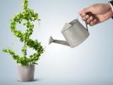 Что такое венчурное финансирование, и как оно работает в Беларуси: семинар в Минске - 12 мая
