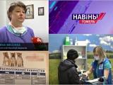 Беларусь-4: ПолиВетЦентр в условиях пандемии - 13 апреля 2020 года